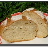 Pšenično - žitné bulky