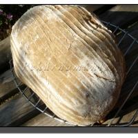 Celokváskový pšenično-žitný chléb
