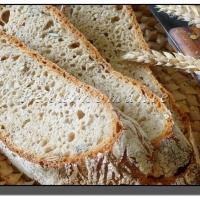 Pšeničný dýňový chléb