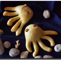 Chobotničky