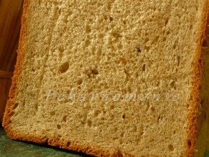 slaninovo-cibulový chleba