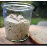 Mikroflora žitných kvasů
