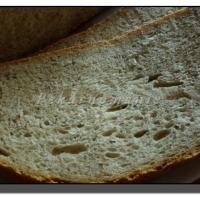 Celopšeničný chleba s dvoustupňovým kváskem poliš