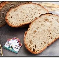 Chléb z naší vesnice